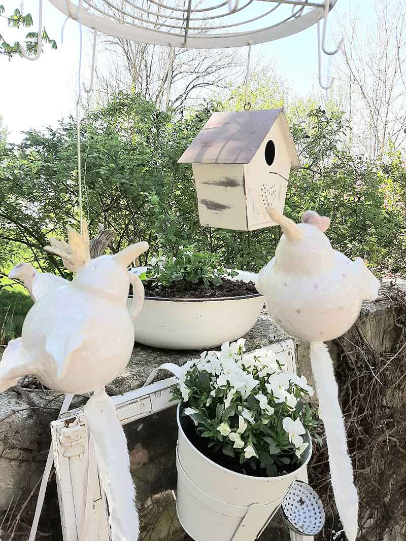 Vögel zum Hängen